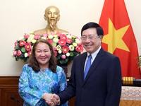 Deputy PM Pham Binh Minh receives Malaysian ambassador