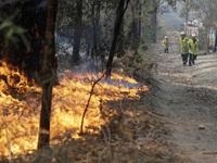 Du lịch Australia bị ảnh hưởng nặng nề vì cháy rừng