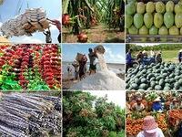 Tổng giá trị xuất khẩu nông sản đạt 41,3 tỷ USD