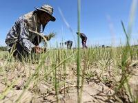 Thái Lan trữ nước để ứng phó hạn hán kéo dài