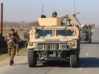 Afghanistan bắt giữ chỉ huy quan trọng của Taliban