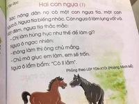 """Sách giáo khoa tiếng Việt lớp 1 """"nhiều sạn"""": Trách nhiệm thuộc về ai?"""