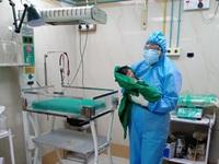 Ấn Độ: Một bệnh viện phải điều trị cho hơn 700 phụ nữ mang thai mắc COVID-19