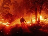 Cháy rừng bùng phát mạnh tại California, khoảng 100.000 người phải đi sơ tán