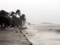Mưa to, gió lớn trong cơn bão mạnh cấp 11 như thế nào?