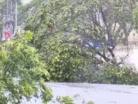 Miền Trung - Tây Nguyên 'oằn mình' vì bão số 9