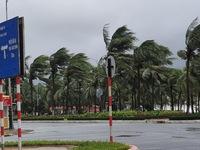 Bão số 9 gió giảm xuống cấp 12, giật cấp 15 khi vào vùng biển từ Quảng Nam đến Bình Định