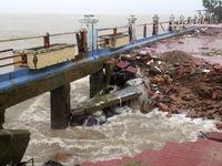 Ảnh hưởng bão số 12: Phú Yên mưa to gió lớn, cây cối ngã đổ, bật gốc