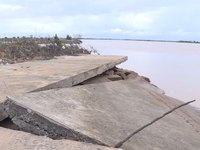 Đê biển sạt lở nghiêm trọng gây thiệt hại hàng trăm tỷ đồng tại Quảng Trị