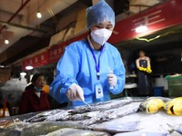 Trung Quốc lại phát hiện virus SARS-CoV-2 trên hàng đông lạnh nhập khẩu