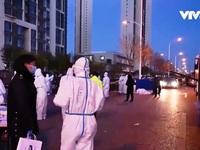 Thượng Hải ráo riết xét nghiệm COVID-19 ở sân bay sau khi có ca mắc mới