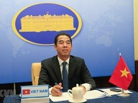 Vietnam-Kazakhstan political consultation held