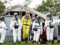 Virus SARS-CoV-2 lây sang người, Đan mạch tiêu hủy 17 triệu chồn nuôi