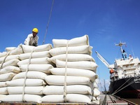 EAEU gives vietnam tariff quota of 10,000 tonnes of rice