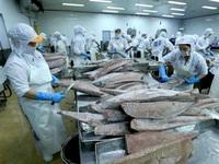 Local tuna exports to US market enjoy swift recovery