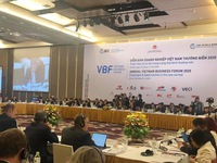 Vietnam Business Forum 2020 held in Hanoi