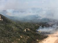 Australia: Cháy rừng bùng phát dữ dội, cư dân trên đảo di sản Fraser sơ tán khẩn cấp