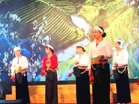 Wide range of cultural activities to be held in Hanoi to celebrate new year 2021
