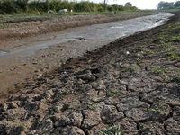 Thái Lan hỗ trợ 98 triệu USD cho nông dân bị ảnh hưởng bởi hạn hán