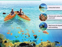 Nha Trang among top 10 destinations for diving in 2020