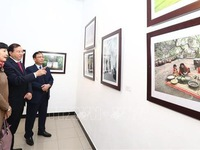 Exhibition opens in Hanoi to celebrate new spring