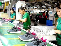 Leather and footwear sector eyes export target of US$24 billion