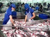 Doanh nghiệp thủy sản sụt giảm 35 – 50#phantram đơn hàng do COVID-19