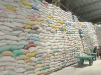 Rice exports grow despite COVID-19