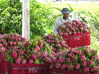 Vietnam – Japan trade up 8.6 percent in two months