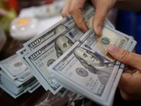 Reference exchange rate continues going down