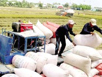 National food reserves sufficient in response to emergencies