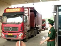 Lao Cai province applies measures to maintain exports