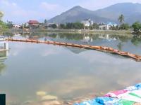Đảm bảo nguồn nước sinh hoạt trước nguy cơ xâm nhập mặn