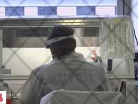 New York, Mỹ lập bản đồ gene của virus SARS-CoV-2