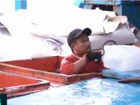 Cẩn trọng tình trạng ngư dân tử vong do ngạt khí trong hầm lạnh tàu cá