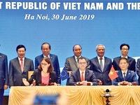 Signing of FTA creates motivation for market diversification