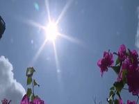 Nắng nóng gay gắt, đề phòng đột quỵ do sốc nhiệt và mất nước