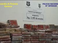 Colombia thu giữ lượng cocaine 'khủng' trị giá 265 triệu USD trong các container