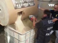 Italy thu giữ lượng ma túy tổng hợp lớn nhất thế giới