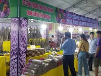 Trade fair introduces Central and Central Highlands' typical industrial products