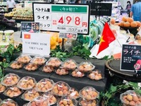 Lychee exports to Japan: great opportunity for small fruits