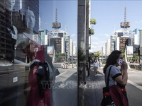 Brazil gia hạn cấm nhập cảnh với người nước ngoài