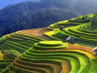 Vietnam Heritage Photo Awards 2020 launched