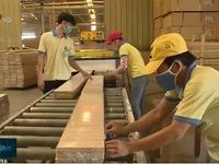 TP.HCM: Nắm bắt cơ hội từ Hiệp định thương mại tự do Việt Nam – EU (EVFTA)