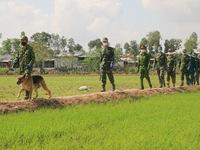 Biên phòng An Giang bắt giữ gần 400 người nhập cảnh trái phép