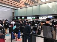 Đưa gần 300 công dân Việt Nam từ Hoa Kỳ và Nhật Bản về nước an toàn