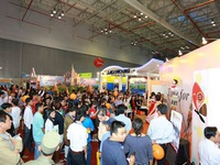 Ho Chi Minh City international travel expo hit by postponement