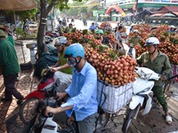 Bac Giang wraps up 2020 lychee season with revenues of VND6.9 trillion