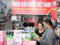 Vietnamese goods dominate large distribution systems