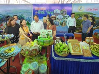 Festival seeks to boost tourism in HCMC and Mekong Delta region